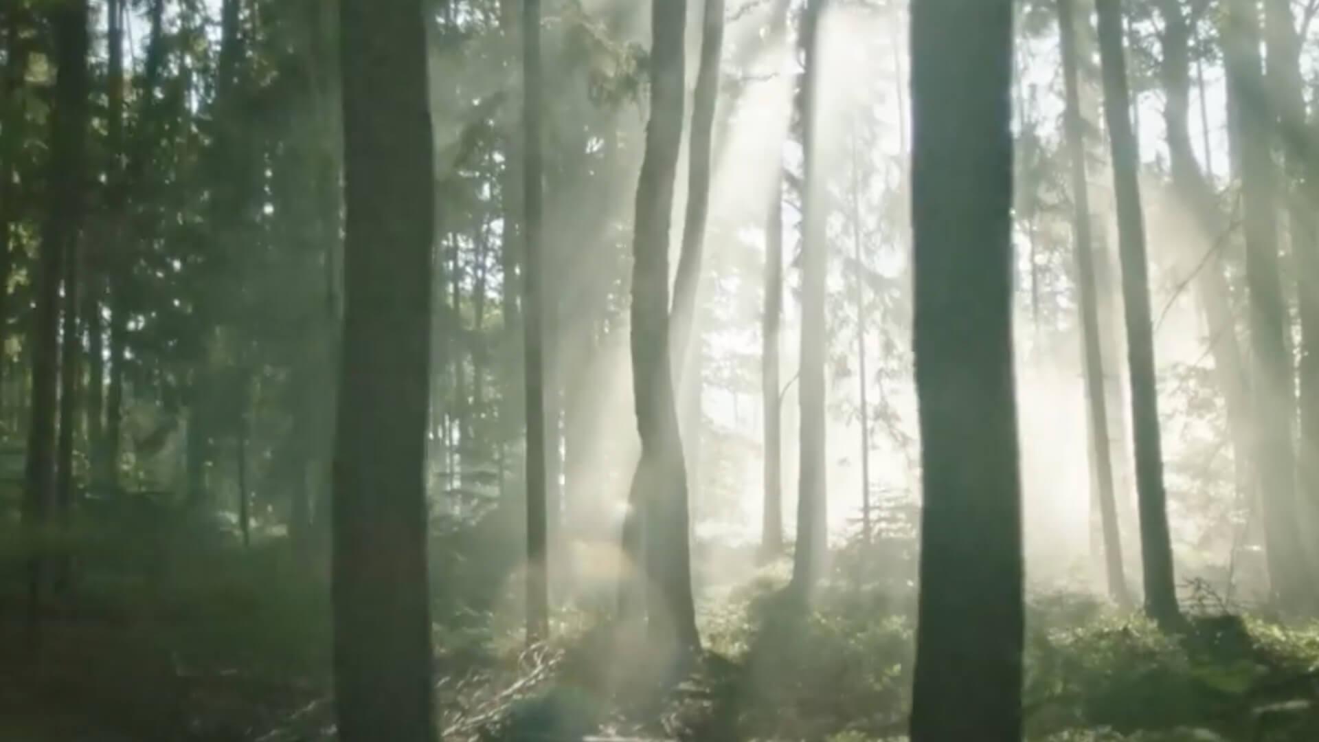 Rajec - Pohyb. Patentováno přírodou